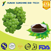 Low Price Organic Grape Seed Extract / Proanthocyanidin for antioxidant & antifatigue.