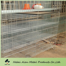 baby chick products,baby chick feeding cage