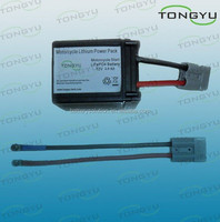 12 Volt Lithium LiFePO4 Starter Battery 2500mAh for YAMAHA, Honda Motorbike Racing