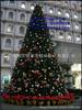 /p-detail/Diretto-factiry-albero-di-natale-artificiale-nuovo-design-artifial-pino-per-grandi-decorazione-piazza-700001181333.html
