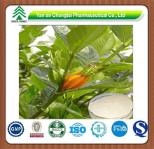 GMP factory supply natural Cape Jasmine Fruit P.E.Gardenia Yellow