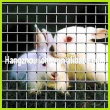 Supply welded wire mesh panel for rabbit cage, welded wire mesh, cage mesh