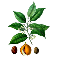 Alibaba online shopping sales nutmeg powder high demand products india