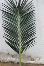 fake palm leaf manufacture garden handmade Artificial palm leaf/branch