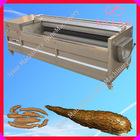 casca de batata e máquina de lavar / peeling de mandioca e máquina de lavar roupa