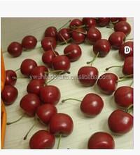 Standard Real Size Cherries Decorative Plastic Artificial Fake Fruit
