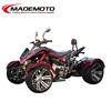 EEC 3 Wheel Petrol Trike Motorcycle for Sale AT3001
