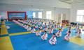 Shanghai fábrica profesional de suministro de alta calidad de karate tatami esteras/alfombrillas 40mm