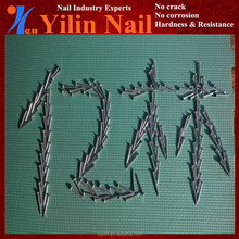wide size iron nails with factory price and high quality