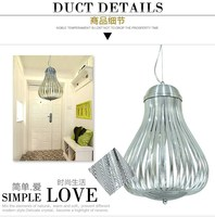 American country style Modern Hand Blow Glass onion Pendant Light