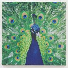 venta al por mayor de impresión de arte animal hermoso pavo real de bellas artes de impresión sobre tela de lino