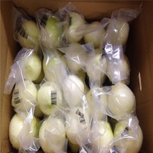 factory 2015 Fresh whole peeled onion with low price