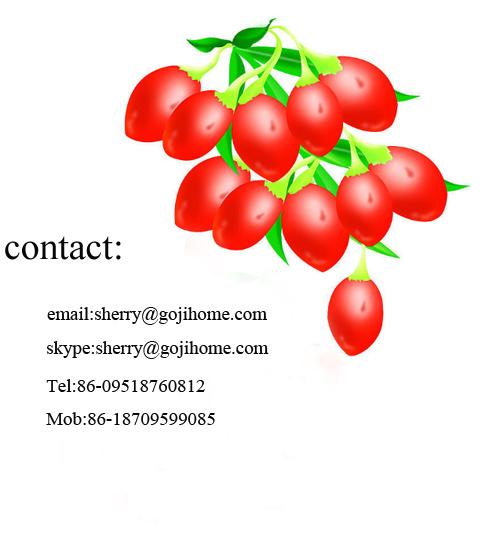Китайский нинся лайчи бесплатные образцы ягоды годжи