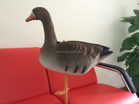Flocked soft XPE Foam Inflatable Whitefronted Speckbelly Hunting Goose Decoys for Hunting Partner