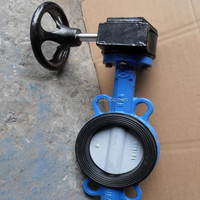 Worm Gear/Gearbox Operated Wafer Type Butterfly Valve