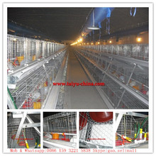 high quality hot sale professional broiler poultry farm house design