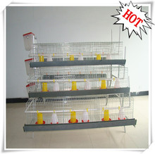 0-60 days old small chicken breeding system chicken cage for baby chick
