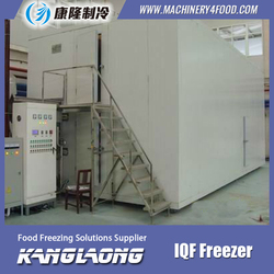2000Kg/H Green Peas iqf quick freezer for sweet corn