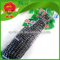 Non GMO Fresh Purple Corn Manufacturer