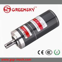 GS High efficiency 32mm 15W 24V Brushless DC motores de popa yamaha usado