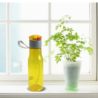 450ml Hot Selling Products Tritan Teamug, Eco-friendly Plastic Water Bottles with Straw, Insulated Sport Cup