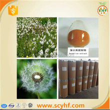 Natural and pure 4:1 5:1 10:1 ratio extract dandelion extract