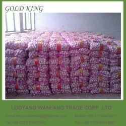 Fresh Seasonable Wholesale Nature Garlic
