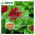 Extracto de Rhodiola Rosea salidrosida 1%, 2%, 3%