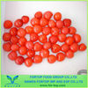 Canned Cherry in Syrup 2015 crop