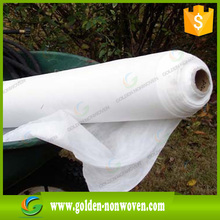 [Golden Nonwoven ] Super-wide Nonwoven With Anti-uv Wholesale PP spunbond agriculture nonwoven fabric for Green House