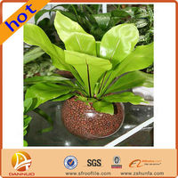 8 years of research and development success Convenient Benefits environmental protection garden soil