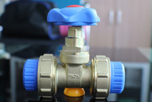 Double union gate valve