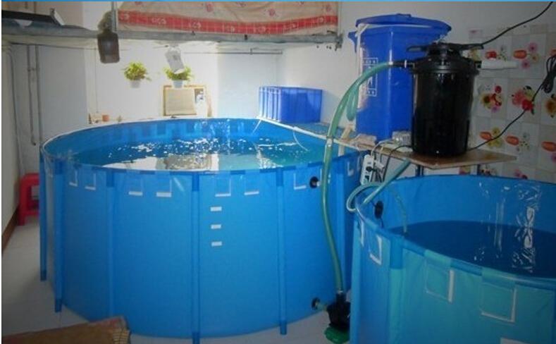 Anti uv aquarium aquaculture plastic indoor and outdoor for Outside fish tank