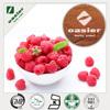Manufacture Supply Raspberry Ketone Powder, Raspberry Extract