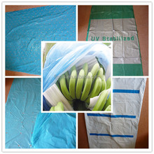 Blue banana bunch bags with impregnated with slow