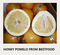New Crop Fresh Pomelo Fruit for Sale from China