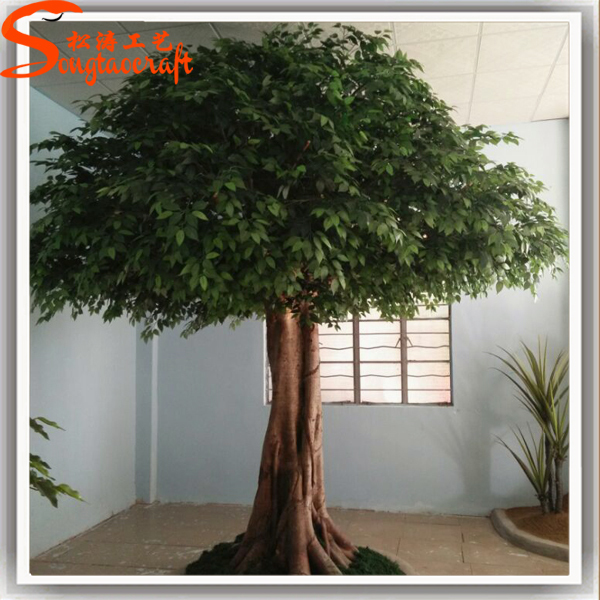 New products 2015 china price evergreen large artificial for Indoor decorative live plants
