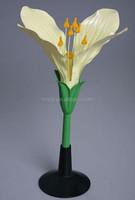 Cabage Flowers Model