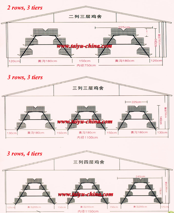Taiyu en Egg Layer House Design - Buy en Egg Layer House ... on tube house designs, model house designs, field house designs, long house designs, container house designs, box house designs, block house designs, duck house designs, scale house designs, paint house designs, turkey house designs, mix house designs, large house designs, view house designs, light house designs, split house designs, wall house designs, lane house designs, row house designs, circle house designs,