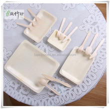 Eco Disposable Divided Wooden Square Plate