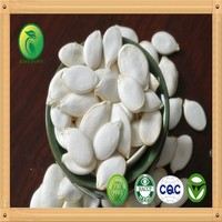 Chinese Pumpkin Seed Wholesale