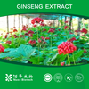 Manufacrurer Supply Supply Red Ginseng Extract/Factory price Panax Ginseng Extract/Ginseng Polysaccharides 50%