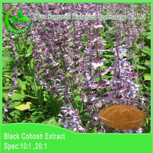 organic black cohosh extract from black cohosh extract herb by expenrienced supplier