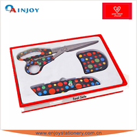 Customizable Design Fancy Tool Set with High Quality
