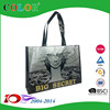 OEM Reusable Non Woven bag, SEDEX Foldable Shopping Bag ,ECO shopping bag