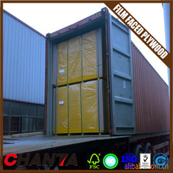 door skin plywood home depot phenolic film faced plywood price with CE certificate