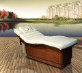 Meubles spa lit de massage électrique( 08d04)