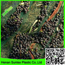 china factory supply 100% HDPE monofilament olive net harvest net corners for the collection of olive /nylon multi monofilament