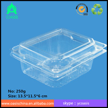Factory customized plastic salad box/ Good Quality Vegetable Plastic Box/ clear plastic vegetable packaging box