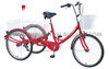 NANYANG BRAND GW7002 24 inch single speed adult tricycle cargo bike